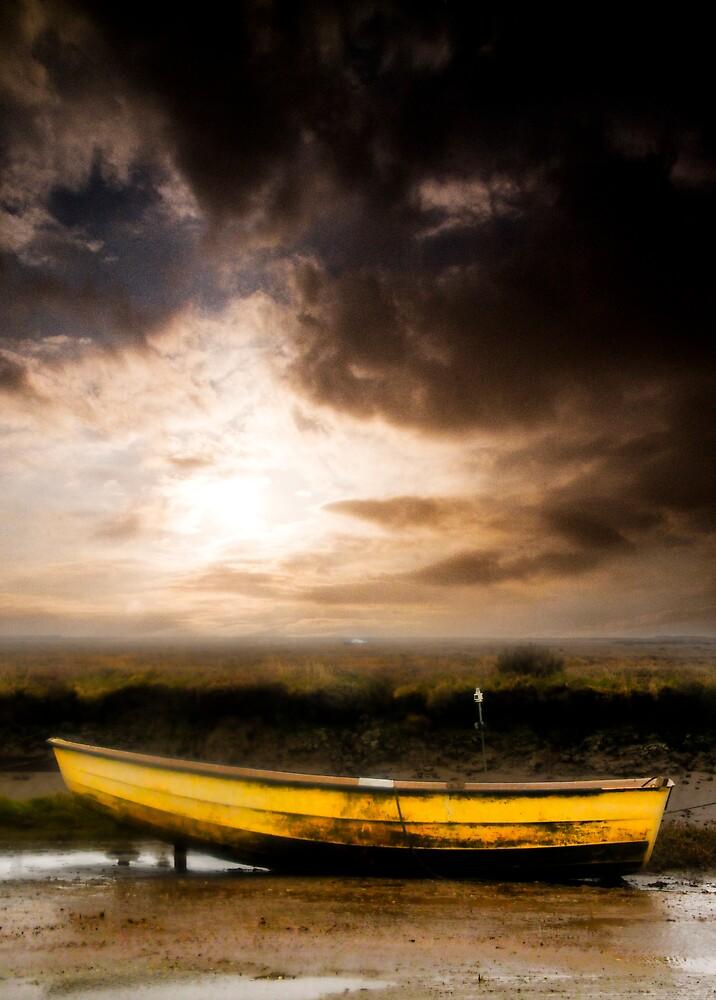 The Yellow Boat 2008 by Timothy Winn