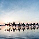 Camel Train at Sunset by Mieke Boynton