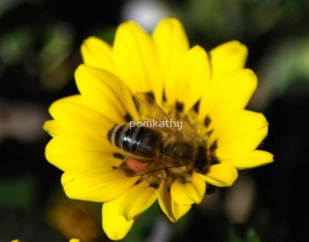 gathering honey  by pomkathy