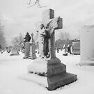 Snow Angel by caryj58