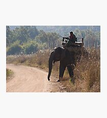 Mahout and Elephant Photographic Print