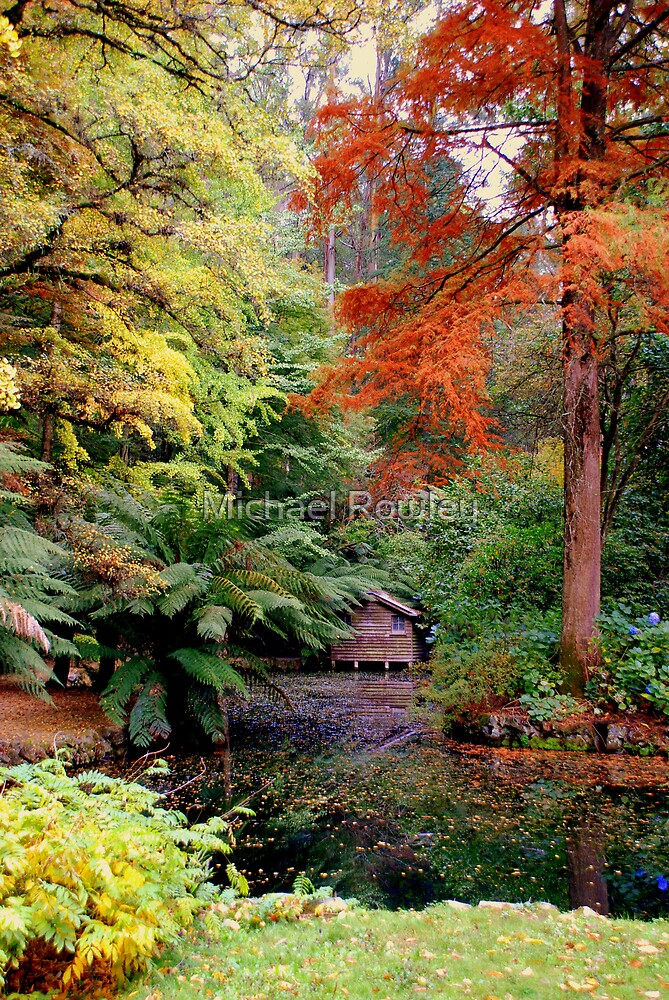 Autumn Colours 2 by Michael Rowley
