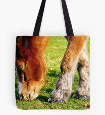 Horse Shoes  Tote Bag