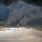 Brewing Overhead by Kerryn Madsen-Pietsch