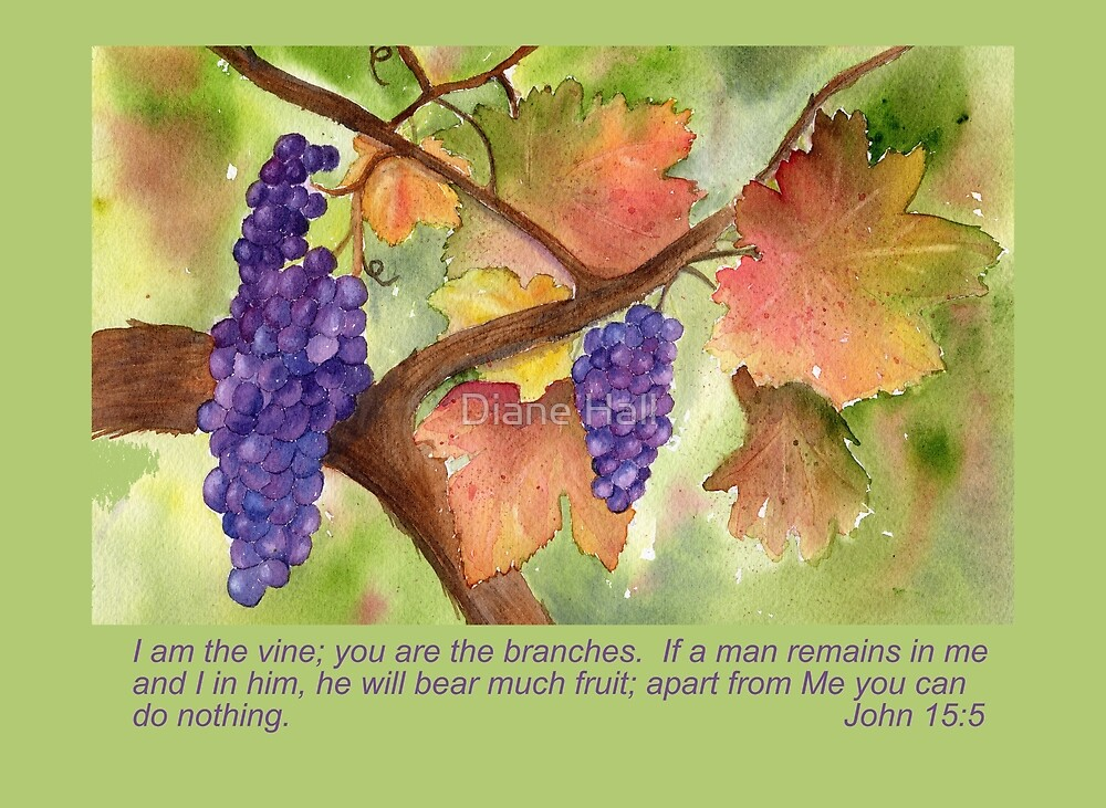 Quot The True Vine John 15 5 Quot By Diane Hall Redbubble