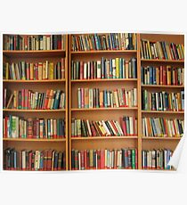 Bookshelf Books Library Bookworm Reading Poster