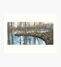 Winter's Reflection Art Print