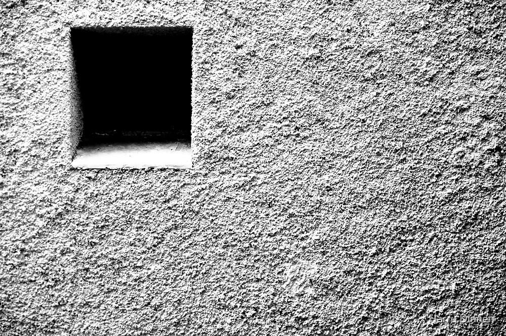 Lone Window by Harry Dinnen