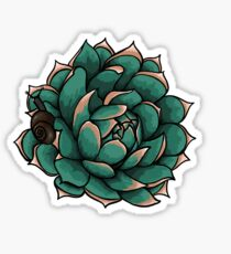 Succulent and Snail Sticker