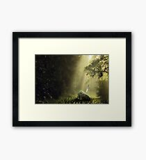 The Sword in the Stone Framed Print