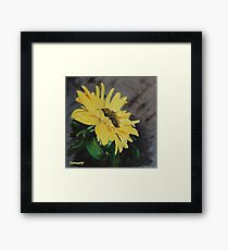 Sunflower Shining Framed Print