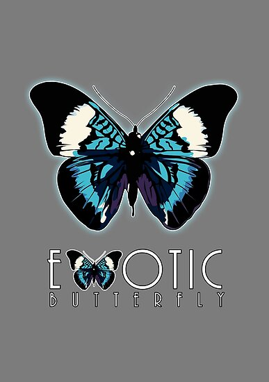 Exotic Butterfly 2 by Adam Santana