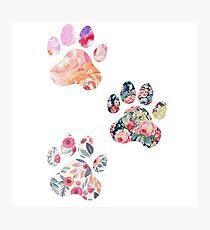 Blumenpfotenabdruck-Trio Fotodruck