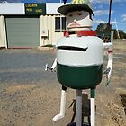 Letterbox, Culcairn Mens Shed, NSW, Australia 2013 by muz2142