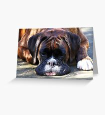 Such is Life -Boxer Dogs Series- Greeting Card