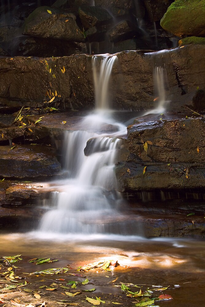Somersby Falls by Dev Wijewardane