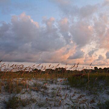 Evening Dunes by NSightStudios