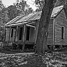 Deserted Cabin by Herb Spickard