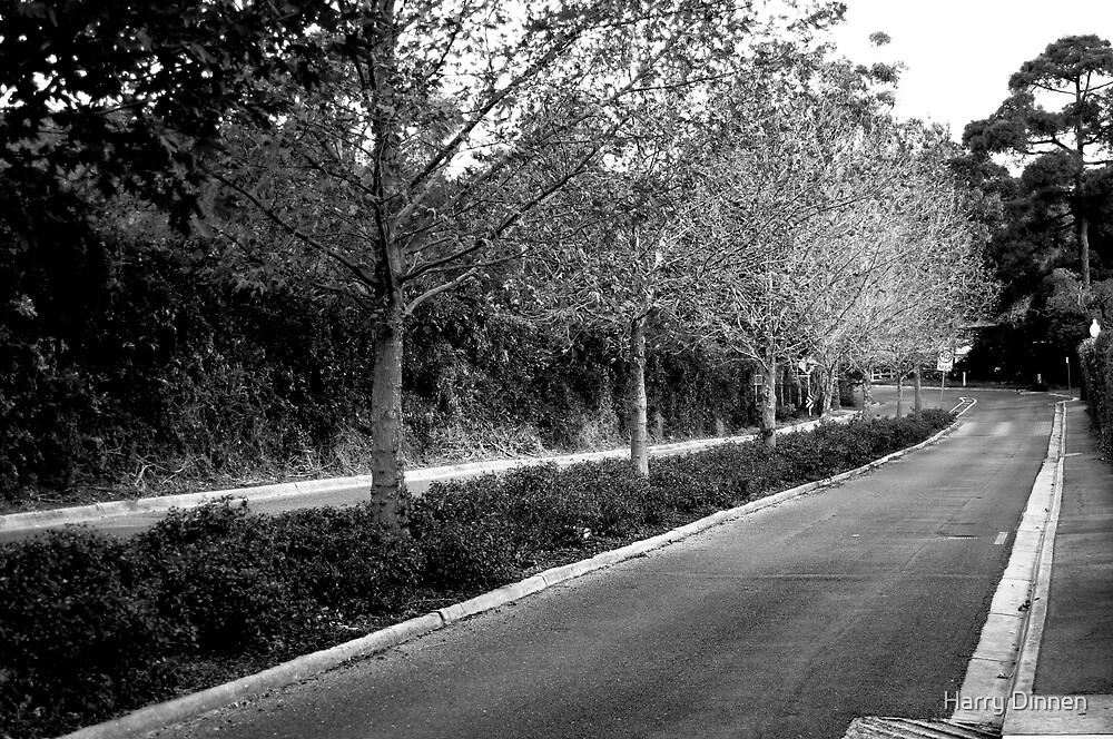 Lane Way by Harry Dinnen