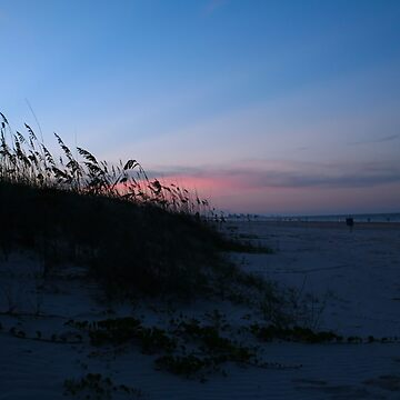 Ponce Inlet Beach by NSightStudios