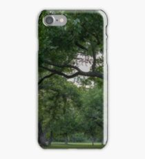 Central Texas Woodland iPhone Case/Skin