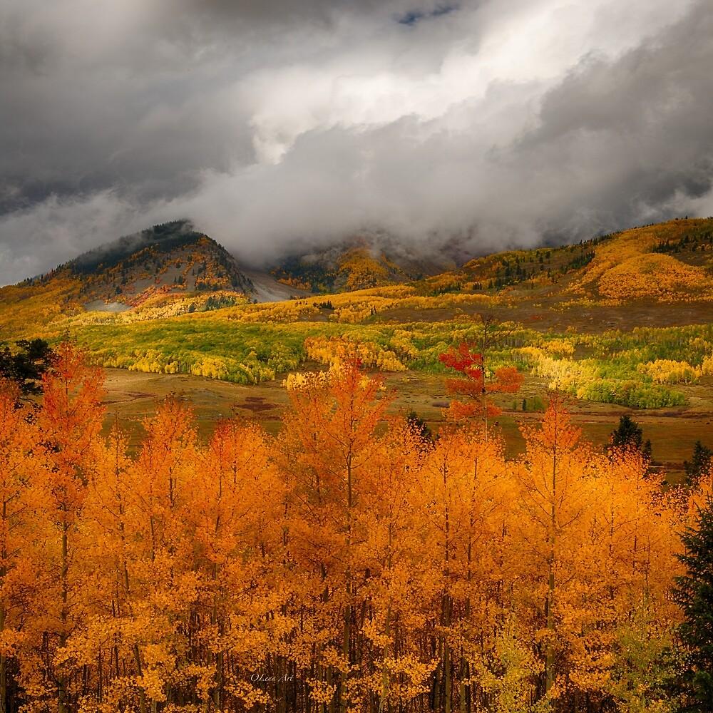 Colorado Fall Colors  by OLena Art - brand