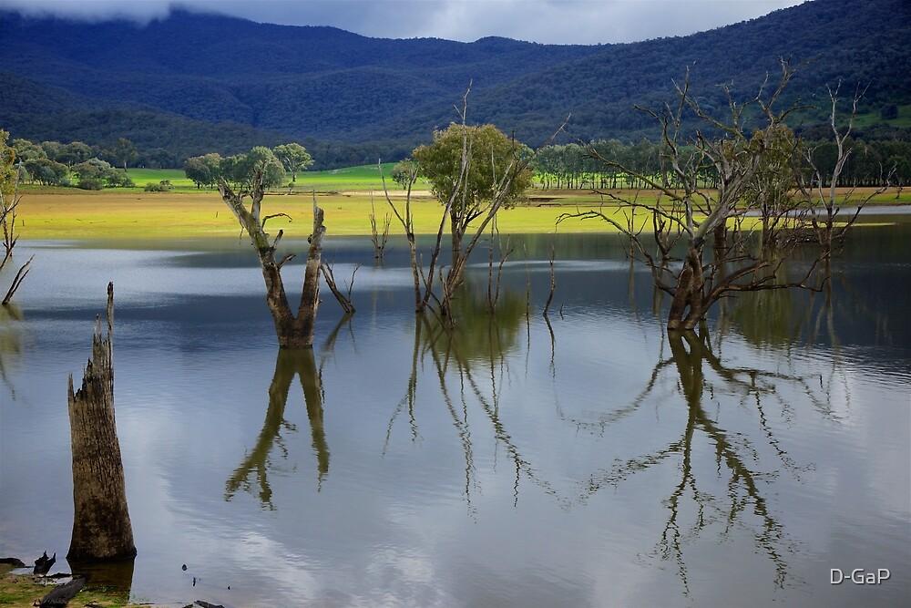 Upper Murray River  by D-GaP