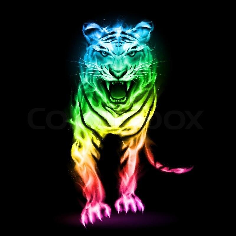 Colorfull Tiger by slavin32