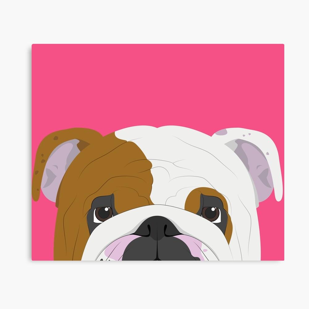 English Bulldog Cute Dog Portrait Illustration Canvas Print