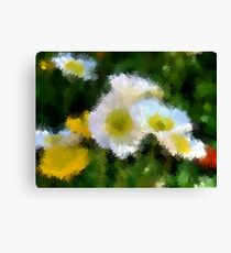 White Floriade Flowers 2 Canvas Print