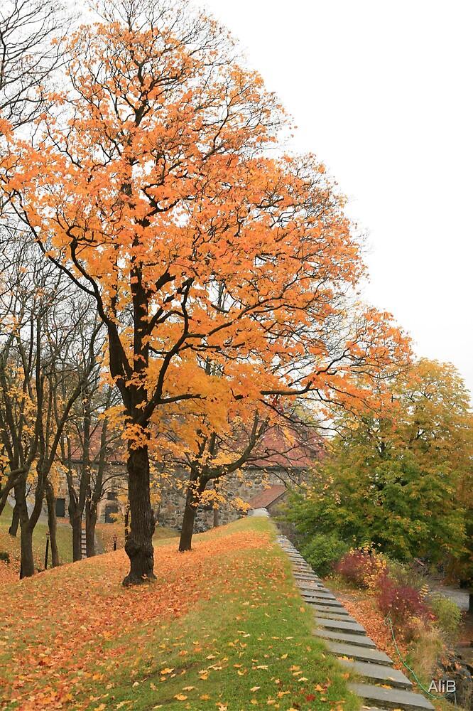 Autumn Trees by AliB