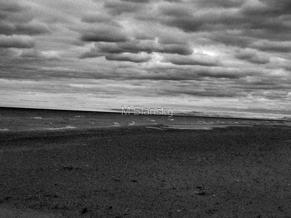 flooded.dune.in.black.&.white by M Slansky