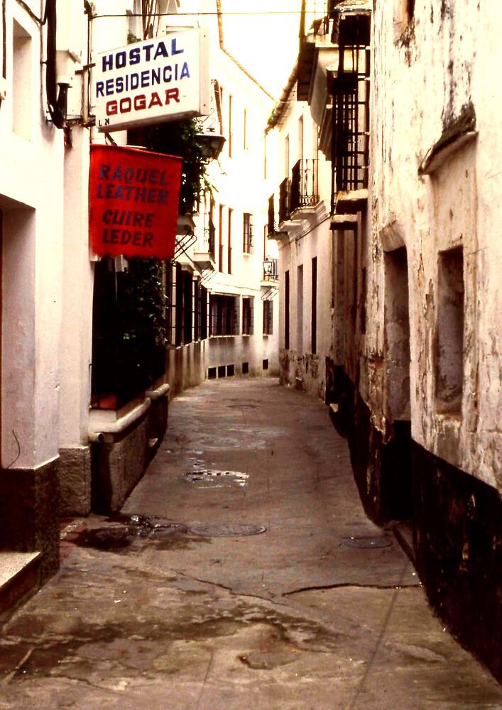 Alleyway by MayWebb