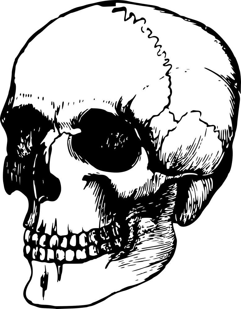 Skull by Yuna26