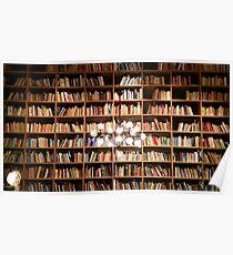 Póster Librero