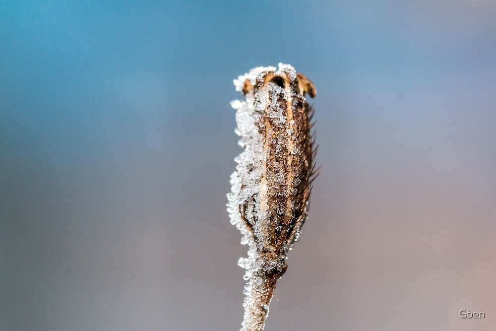 Crystalized by Gben