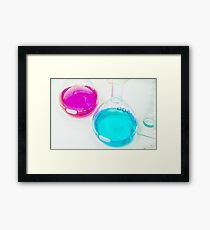 Chemical flasks in Industrial Chemistry Laboratory Framed Print