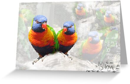 Rainbow Parrots by simplydesignart