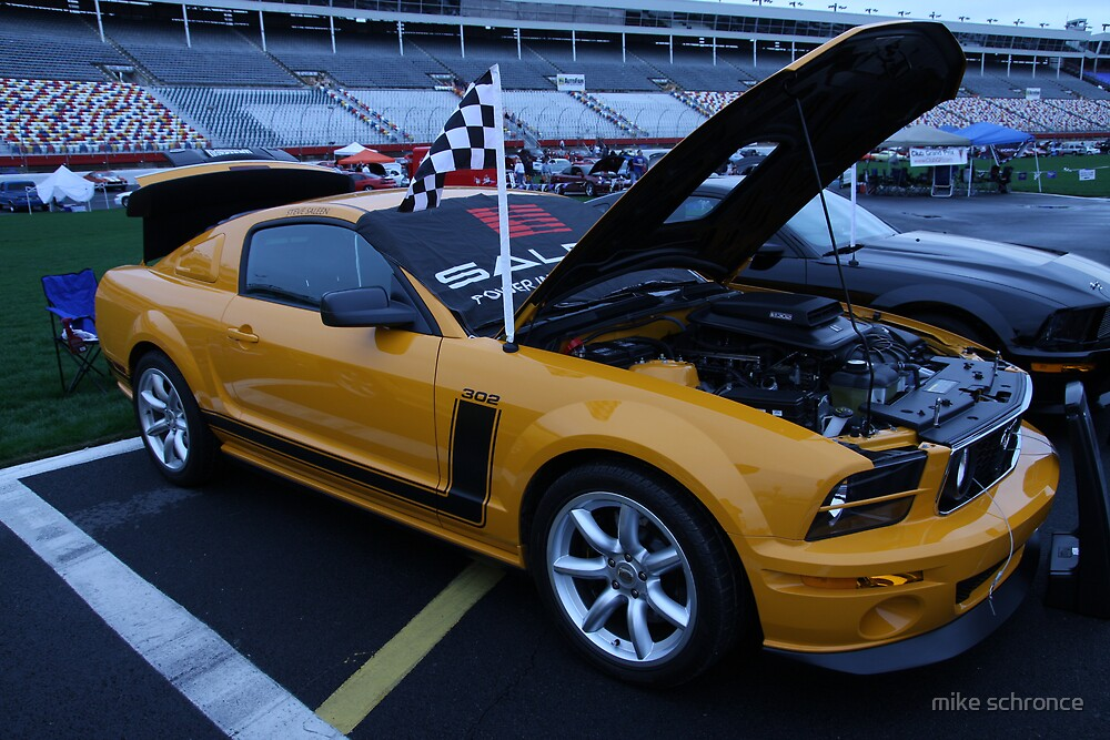 yellow  boss 302 mustangs by mike schronce