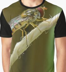 Hoverfly at Rest Graphic T-Shirt