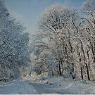The Winter's Tale by Ana Belaj