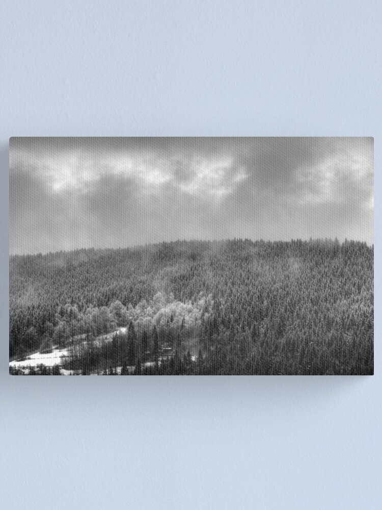 Alternate view of Mist #2 Canvas Print