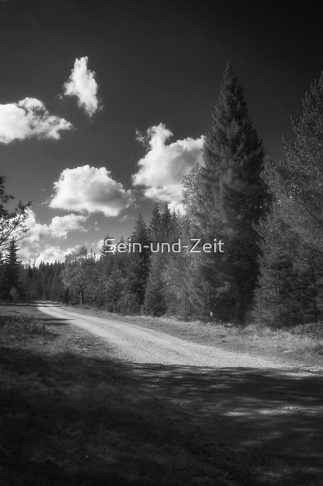 Norwegian tones by Sein-und-Zeit