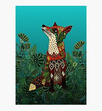 floral fox Photographic Print