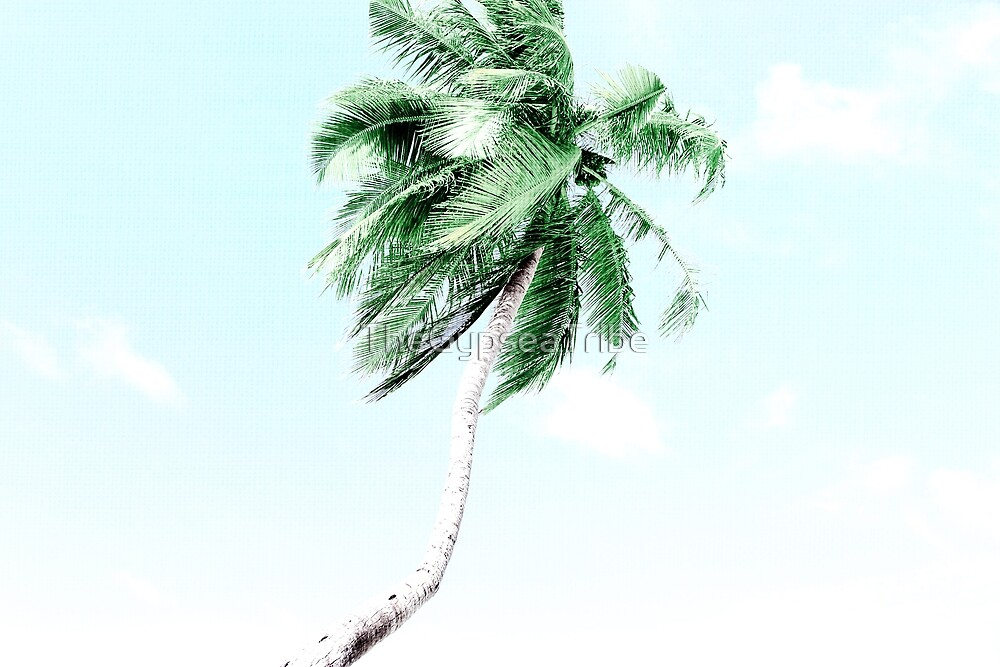 PALM TREE by TheGypseaTribe