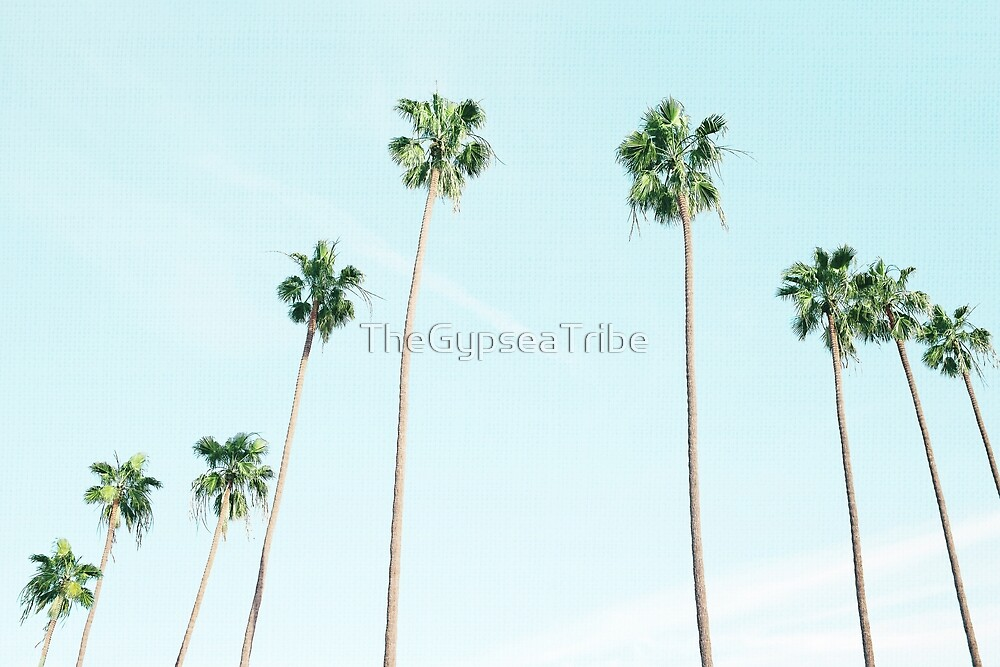 PALM TREES by TheGypseaTribe