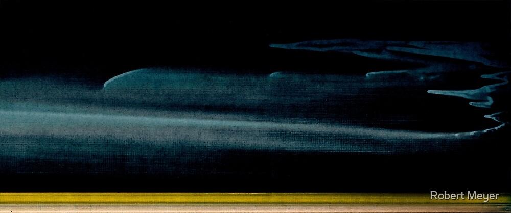 Moonswept by Robert Meyer