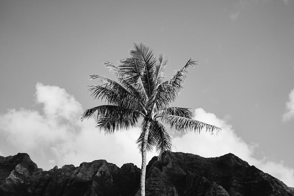 Hawaiian Palm Tree by Bethany Young