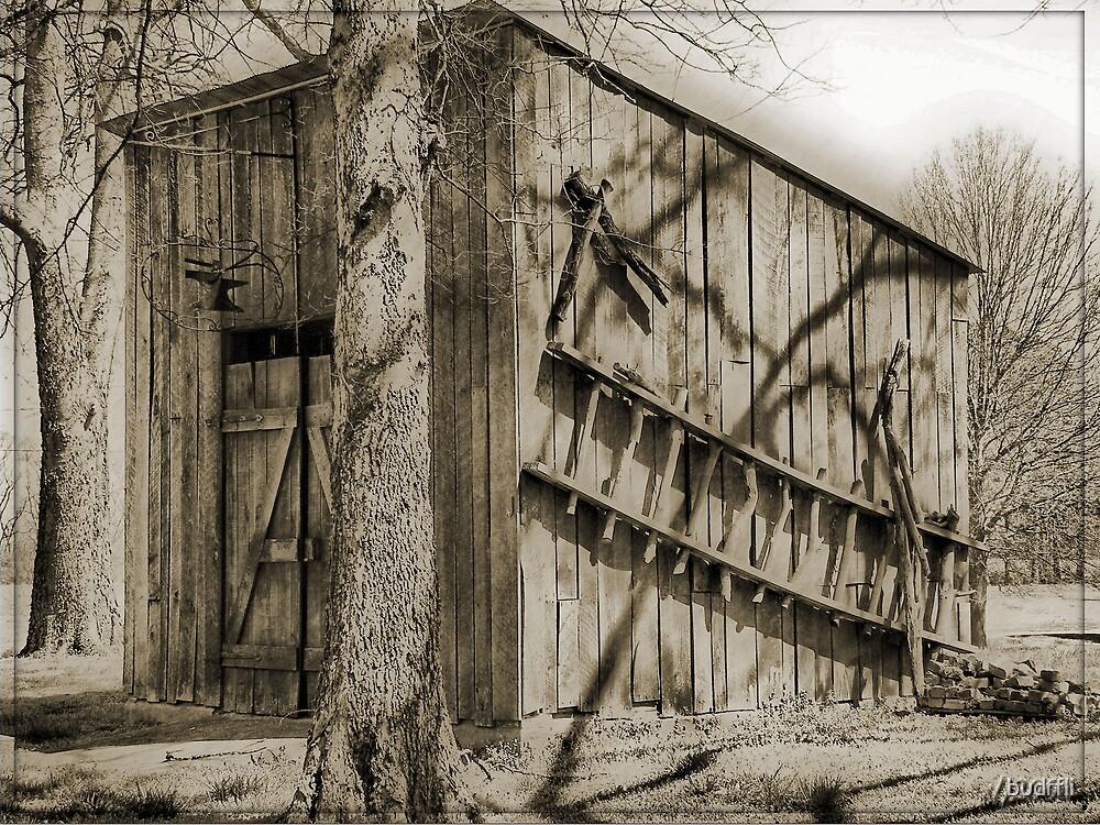 Blacksmith Shop by budrfli