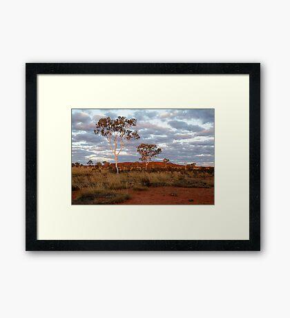 Sunset Ghost Gums,Batton Hill, North Simpson Desert Framed Print